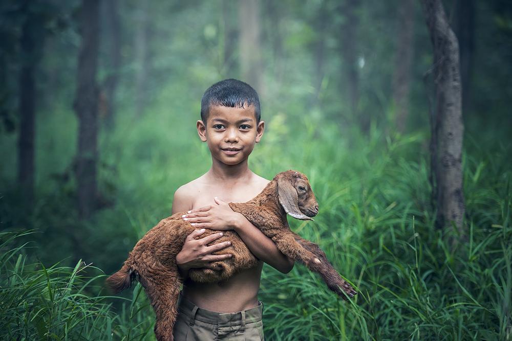 Menschen und Tiere als Beweis für Gott